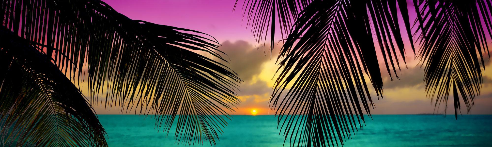 Purple sky sunset through palm fronds